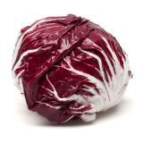 Salat Radicchio