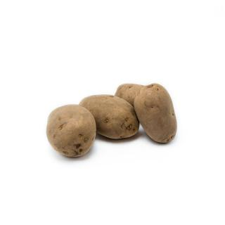 12,5kg festkochend Kartoffeln  Bernia