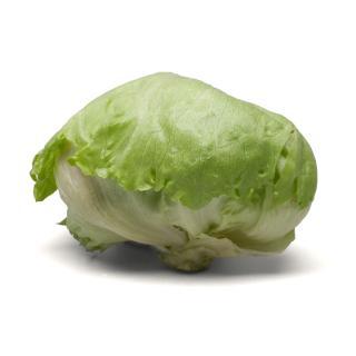 Salat Eisbergsalat