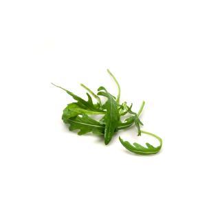 Salat Rucola 75g