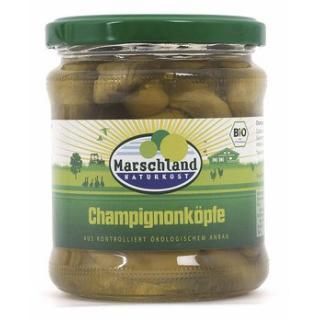 Champignon Köpfe