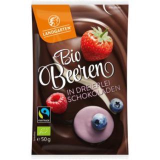 Schoko Beeren Mix