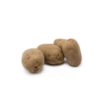 12,5kg festkochend Kartoffeln