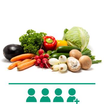 FrischeKiste Gemüse 22